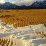 Lugares increibles en Rusia - un desierto en Siberia
